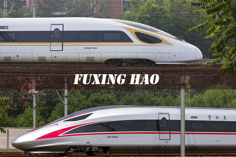 Fuxing High Speed Train types