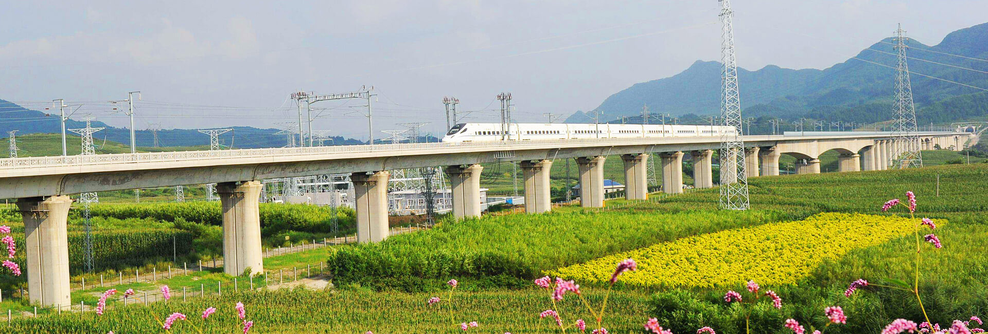 China High Speed Train Types