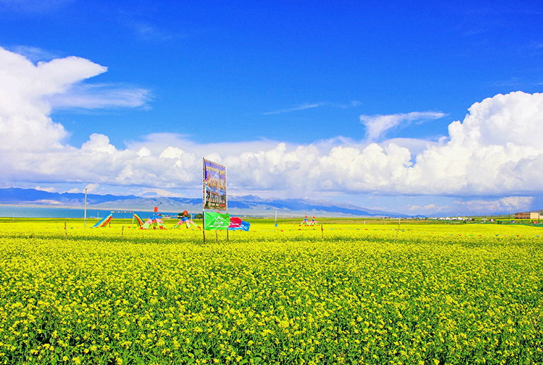 Picturesque Qinghai Lake