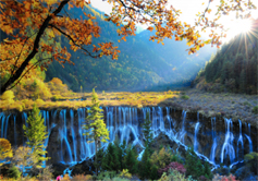 Picturesque Jiuzhaigou Scenery