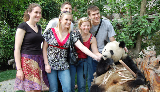 Giant Panda with visitors