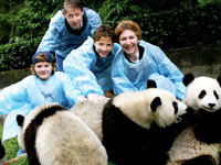 Chengdu Panda Family Tour