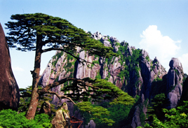 Huangshan High Speed Trains
