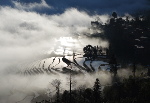 Yuangyang Rice Terraces