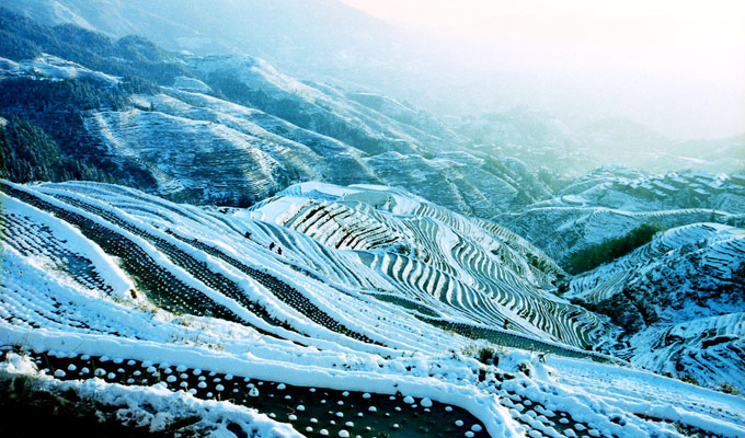 Longji Rice Terrace in Winter