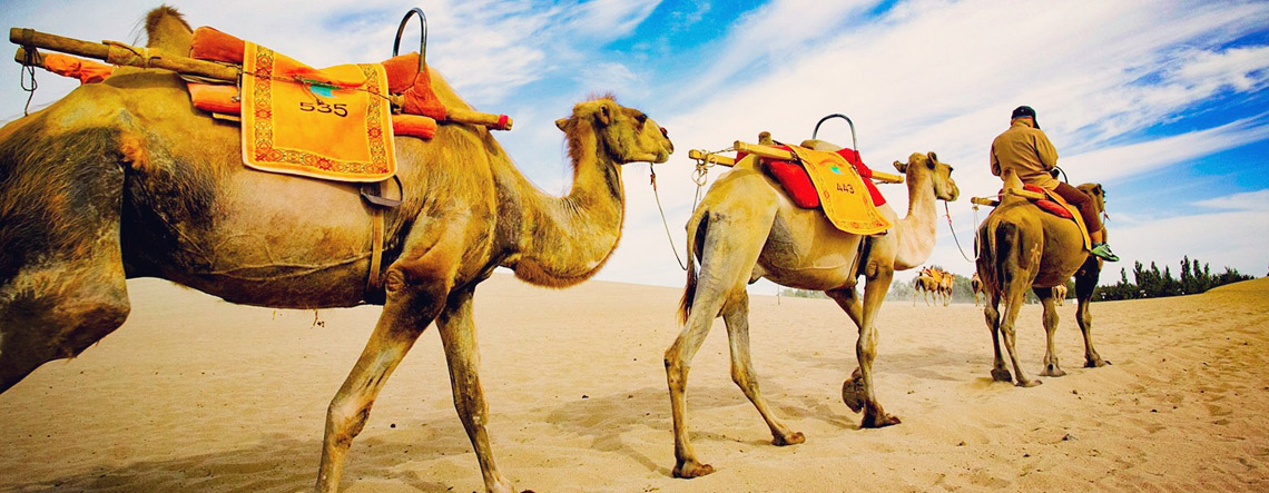 6 Days Beijing to Dunhuang Silk Road Tour