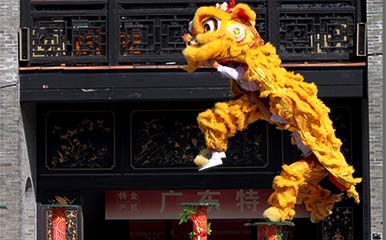 Lion Dancing and Learn Kung Fu Ancestral Hall