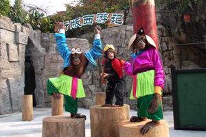 Changlong Safari Park