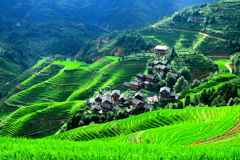 Guilin Photography -  Longji Rice Terreaces