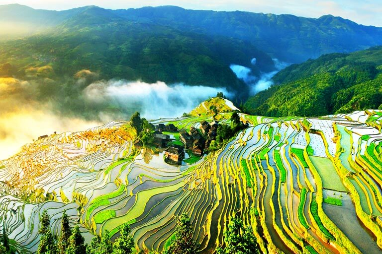 Jiabang Rice Terraces