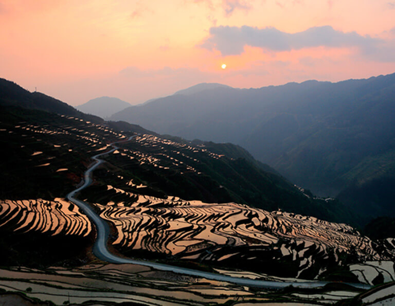 Beautiful Jiabang Rice Terraces Sunset