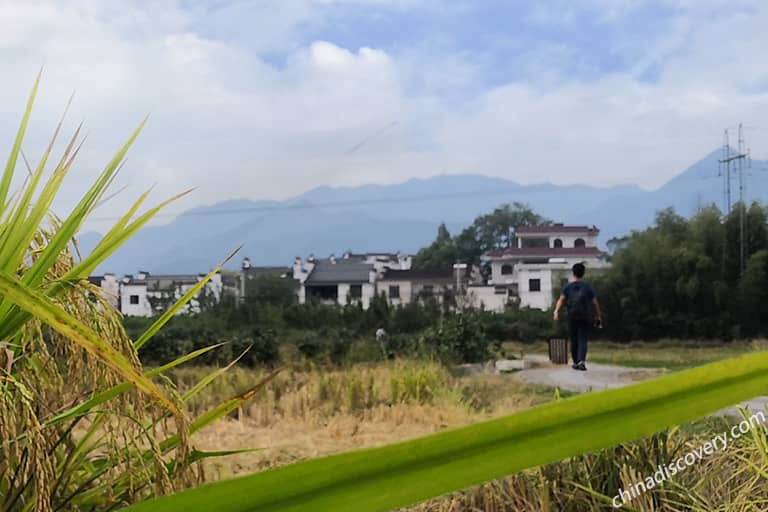 Peaceful and Authentic Nanping Village