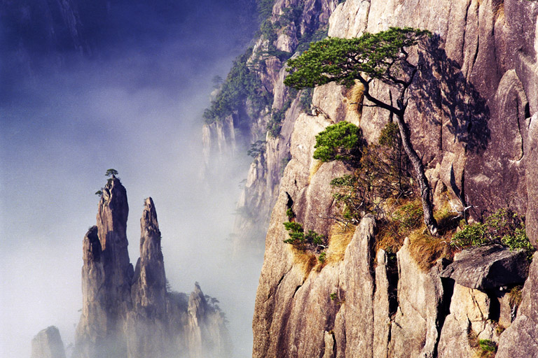 Huangshan Yellow Mountain Tour