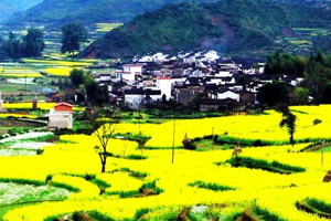 Wuyuan County