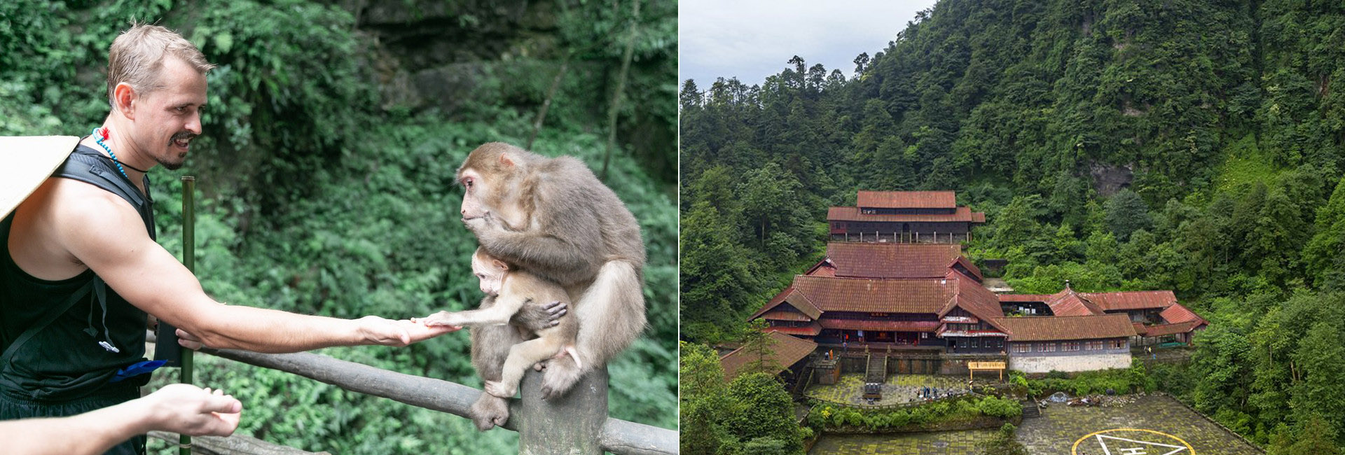 4 Days Mount Emei In-depth Hiking Tour including Leshan Giant Buddha
