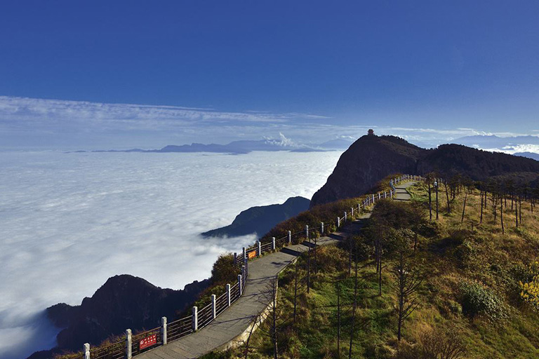 Mount Emei Hiking Tour
