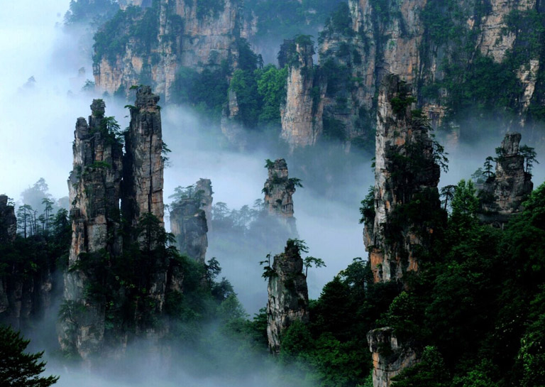 China Nature Tours