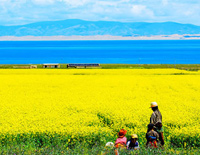 Qinghai Lake walking