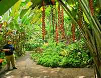 Tropical Botanical Garden