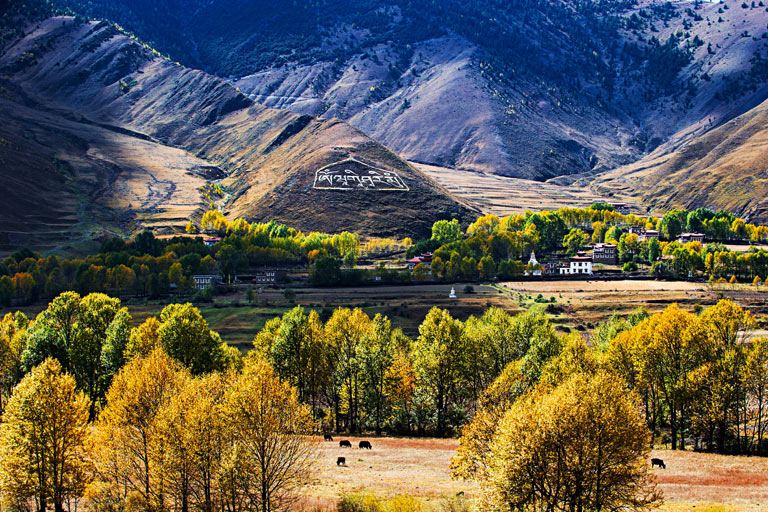 Xinduqiao Town Countryside Scenery in Autumn