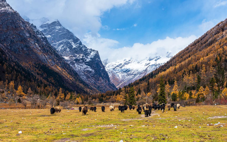 Changping Valley Muluozi in Autumn