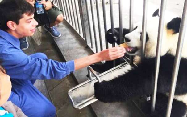 Shenshuping Base Volunteer Panda Feeding