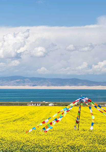 Beautiful plateau - Qinghai