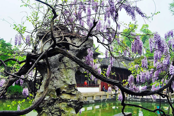 Things To Do In Suzhou Top Suzhou Attractions West Lake Lingyin Temple