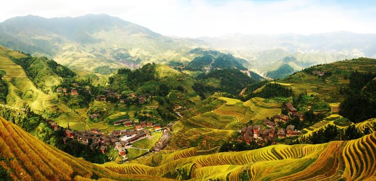 Longsheng Rice Terraces Dragon Backbone Rice Terraces
