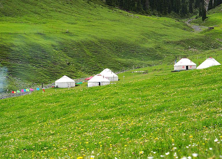 Image result for nashan grassland