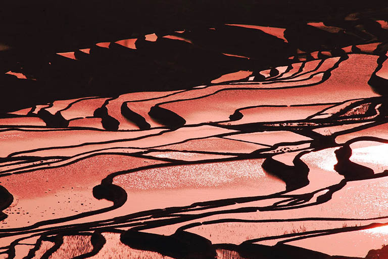 Duoyishi Rice Terraces Sunrise