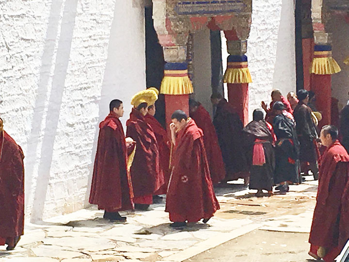 Monks Gathering Together in Labrang Monastery, Photo Shared by Monica, Tour Customized by Leo