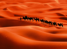 9 Days Taklamkan Ancient Silk Road Tour