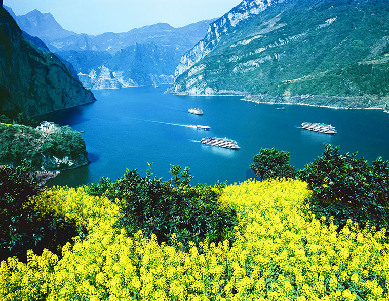 Yangtze River Cruise Spring Flowers