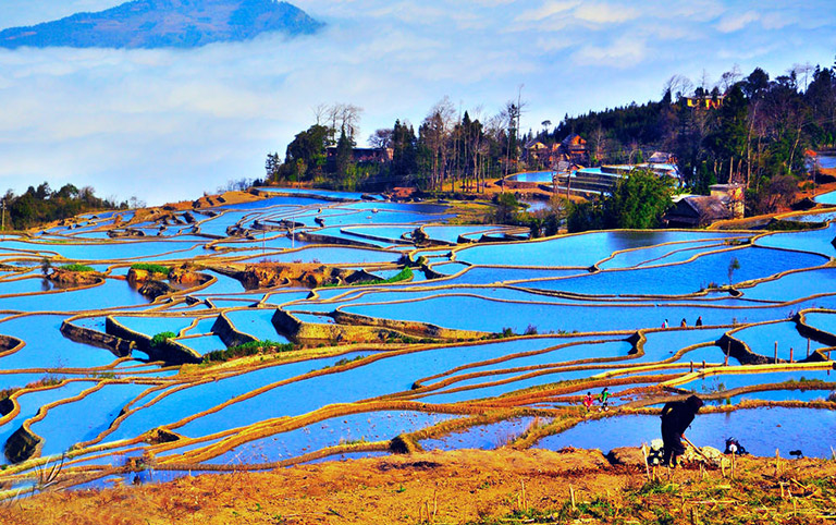Blue Rice Terrace in Aichun Village