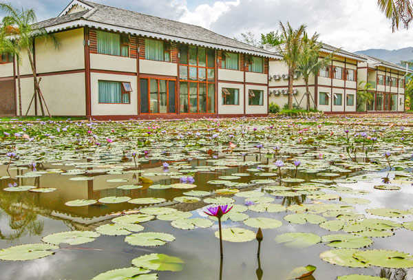 Where to Stay in Menghai County