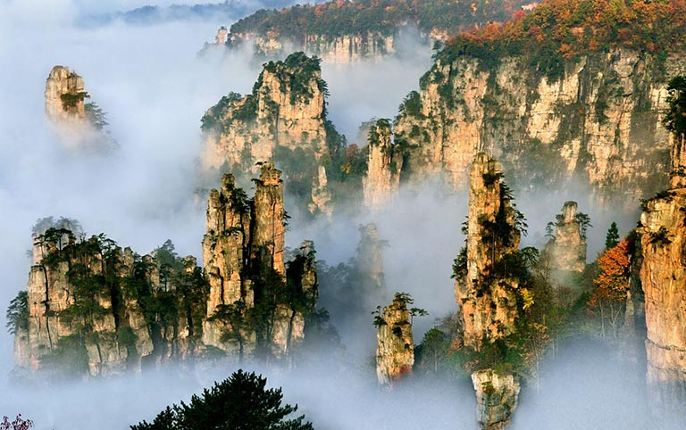 Mysterious Sea of Clouds at Tianzi Mountain