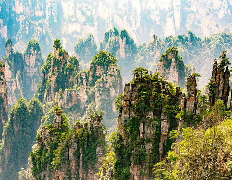 Tianzi Mountain Pillar Forest