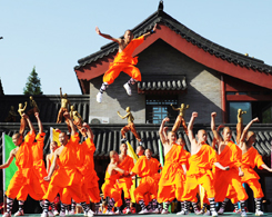 International Shaolin Wushu Festival