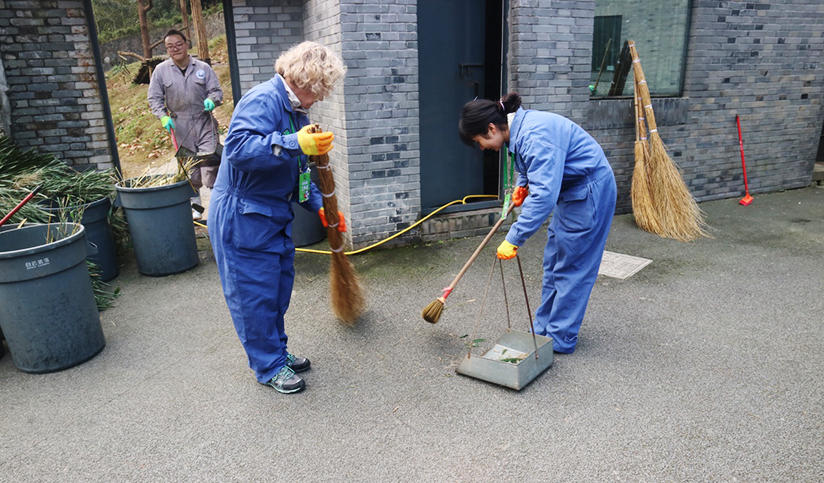 Volunteers Clean Panda's House