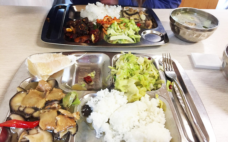 Enjoy Lunch at the Staff Cafeteria at Dujiangyan Panda Base