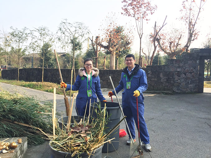 Dujiangyan Panda Base Volunteer Work