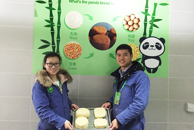 Make Panda Cake at Dujiangyan Panda Base